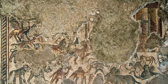 Huqoq mosaic depicting Noah's Ark. (Jim Haberman, Courtesy UNC-Chapel Hill)