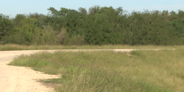 The new wall would run along this levee road of the National Butterfly Center, separating 70 acres on the southern section of the levee.