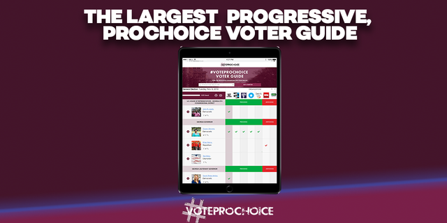 Heidi Sieck is the co-founder of #VoteProChoice, an organization encouraging Americans to elect abortion rights advocates.