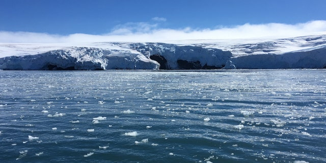 Blocks of ice drift on the water off the coast of Collins glacier on King George Island, Antarctica on February 1, 2018.