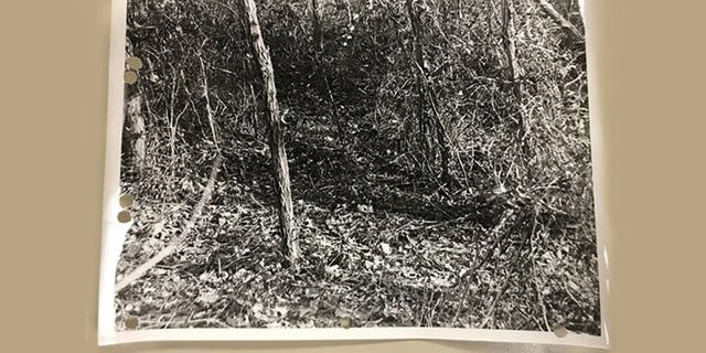 Crime scene from an unsolved murder dating back to the summer of 1972, in which a hunter discovered human remains in a wooded area off Route 197 along the Baltimore-Washington Parkway in Laurel. (Prince George's County Police)