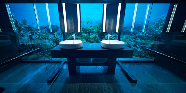 """Lucky guests can enter the main attraction –an all-glass hotel room, 16.5 feet below sea level –via an elevator or spiral staircase that the outlet likens to """"Alice's rabbit hole"""" into a """"watery wonderland."""""""