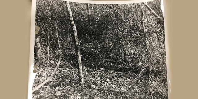Crime scene from anunsolved murder dating back to the summer of 1972, in which a hunter discovered human remains in a wooded area off Route 197 along the Baltimore-Washington Parkway in Laurel.