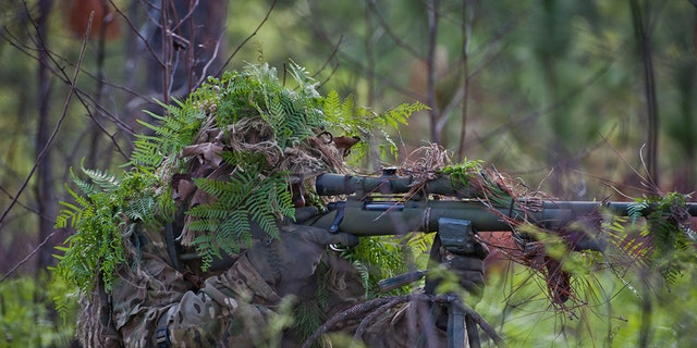 File photo of a heavily camouflaged sniper (U.S. Army)