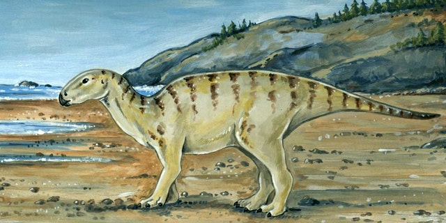 Illustration of what ornithopod may have looked like.