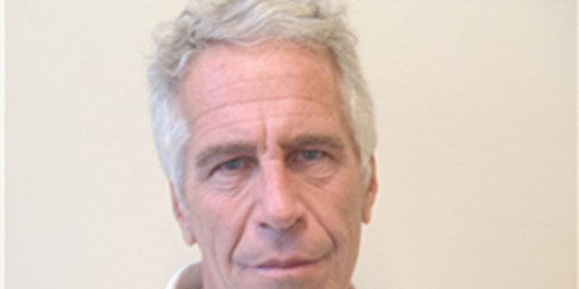 Jeffrey Epstein's picture in the Florida sex offender database.