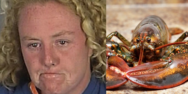 """Upon her arrest, the woman continued cursing, stating that she """"did not know what she did with the lobster"""" because she was """"blacked out drunk."""""""