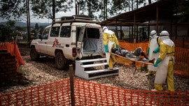 'Young miracle': Baby recovers from Ebola in Congo outbreak