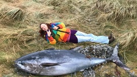 Giant Atlantic bluefin tuna washes up in Scotland, shocks beachgoers: It was an 'impressive beast'