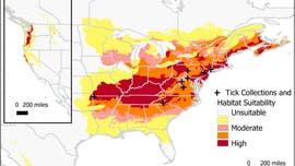 Invasive tick is 'here to stay,' and here's where it could spread next