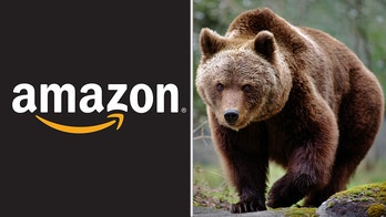 24 Amazon employees hospitalized, one in critical condition, after exposure to bear repellent