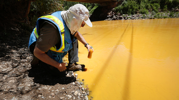 EPA: Fish damage from mine spill wasn't severe, long-lasting