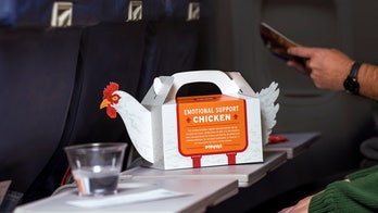 Popeyes launches 'Emotional Support Chicken' carrier at Philadelphia airport