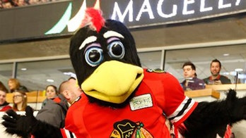 Chicago Blackhawks mascot punches, body slams fan in viral video