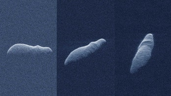 'Potentially hazardous' hippo-shaped asteroid a mile long skims past Earth