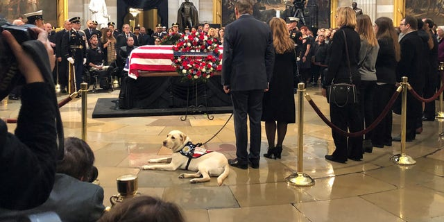 Among those who visited on Tuesday included Sully – Bush's yellow Labrador service dog who flew with the former president's casket to Washington. (Caroline McKee/Fox News)