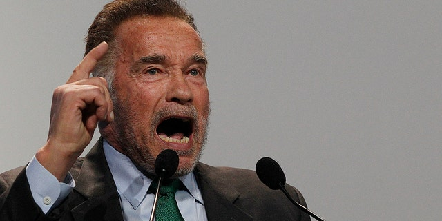 Actor Arnold Schwarzenegger delivers a speech during the opening of COP24 UN Climate Change Conference 2018 in Katowice, Poland, Monday, Dec. 3, 2018.)