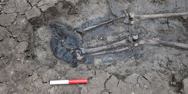 The position in which the skeleton was found -- face-down, one arm above his head, another bent to the side -- are also key indicators of how the man possibly died, researchers said.