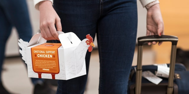Passengers may get an emotional support chicken carrier starting Tuesday.