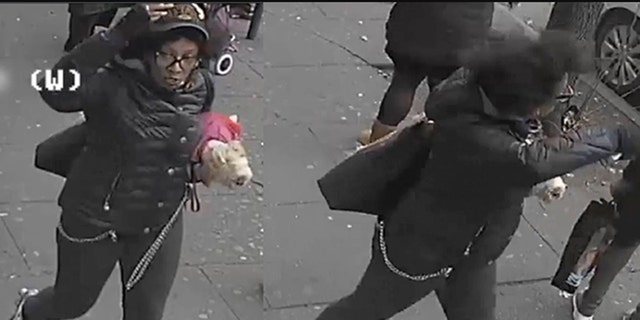 The woman allegedly slashed two other bus riders when they petted her small dog on Monday in the Bronx.