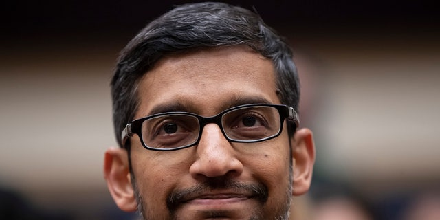 Google CEO Sundar Pichai is seen above. A group of the tech giant's employees is not happy with the company's relationships with the police.