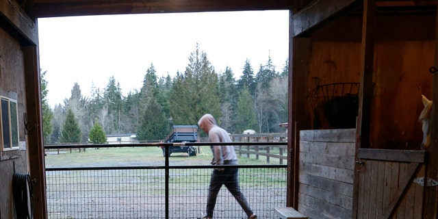 In this Monday, Dec. 10, 2018, photo, Robel, an 18-year-old tech addict from California, leaves a barn after helping feed animals at the Rise Up Ranch outside rural Carnation, Wash. (AP Photo/Martha Irvine)