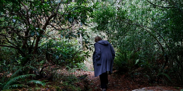 In this Monday, Dec. 10, 2018, photo, Psychologist Hilarie Cash walks on a forest path at a rehab center for adolescents in a rural area outside Redmond, Wash. The complex is part of reSTART Life, a residential program for adolescents and adults who have serious issues with excessive tech use, including video games. Disconnecting from tech and getting outside is part of the rehabilitation process. (AP)