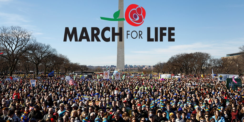 Image result for march for life