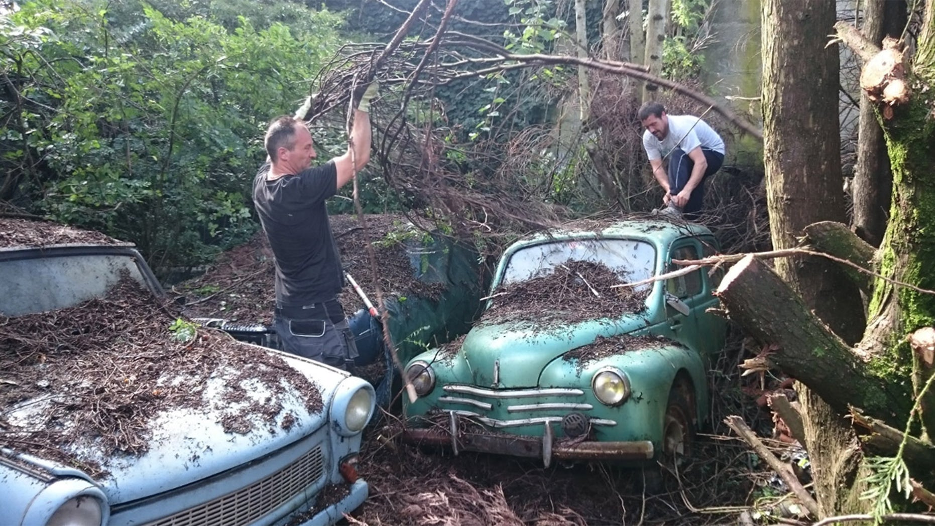 81 Barn Find Collection outdoors