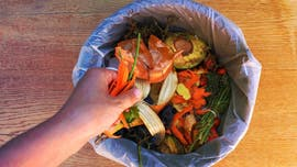 10 things can totally put in the compost pile — and 3 you can't