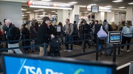 As government shutdown continues, more TSA agents calling out 'due to financial limitations'