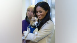Meghan Markle opens up about being a 'proud rescue dog owner' for charity