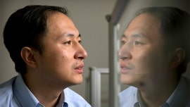 Chinese doctor who says he genetically edited babies is fired for going rogue