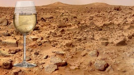 Wine on Mars? The world's oldest wine-making country wants to make it happen