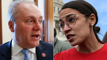 GOP's Steve Scalise shuts down Twitter debate on taxes with Ocasio-Cortez after 'radical followers' allude to Virginia shooting