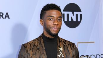 Late actor Chadwick Boseman honored at MTV Movie & TV Awards