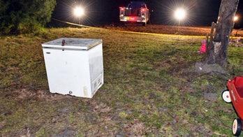 Three children in Florida die after locking themselves inside freezer: police