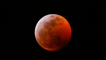 Florida officer hits 2 pedestrians lying on road watching 'super blood Moon' eclipse, police say
