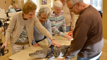 Emotional support alligator visits Pennsylvania senior facility to offer comfort