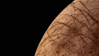 Ocean moons, promising targets in search for life, could be dead inside