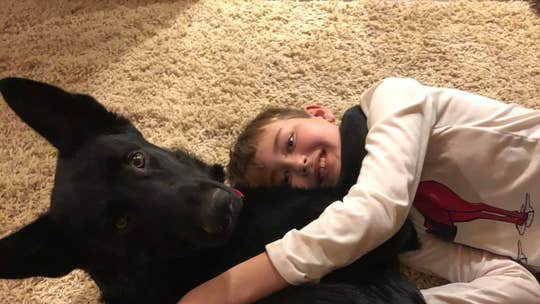 North Carolina boy battling cancer reunited with dog after man makes 2,300-mile cross-country trip