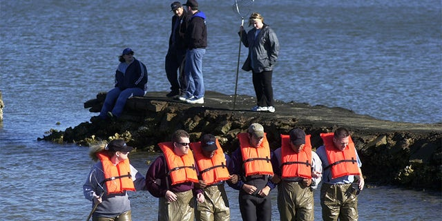 Private detectives with Blue Moon Investigations comb a portion of Galveston Bay in Galveston, Tex., in search of the head of Morris Black.
