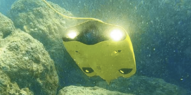 The Gladius Mini is an underwater drone that was unveiled at CES in Las Vegas, Nevada.