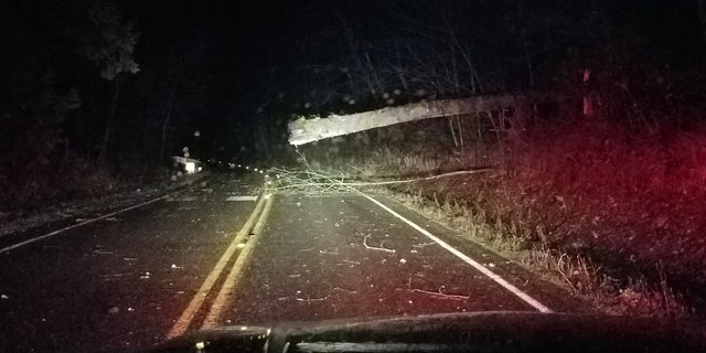 Numerous roads were closed throughout the region after strong winds brought down trees and power lines.