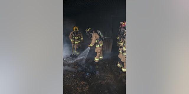 Toxic Chemicals Contaminate Cape | Fox News