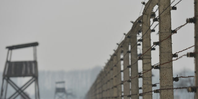 Westlake Legal Group getty-images-auschwitz-birkenau Why wasn't Auschwitz bombed by the Allies? New doc explores possible answers fox-news/science fox-news/columns/digging-history fox news fnc/science fnc Christopher Carbone article 29cb37f5-5dfc-57fc-8739-7408a2fbe703
