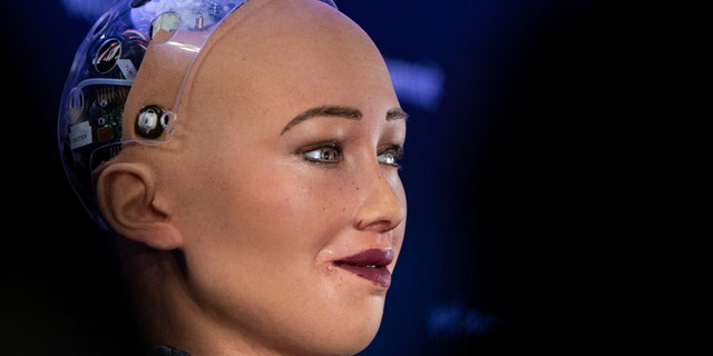 Sophia, the robot, is seen at a press conference at Web Summit 2018.