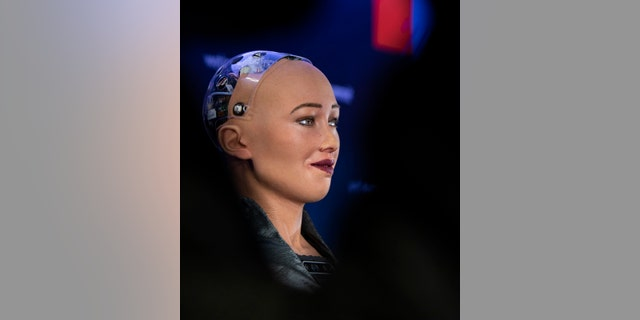 Sophia, the robot, is seen at a press conference at Web Summit 2018.聽