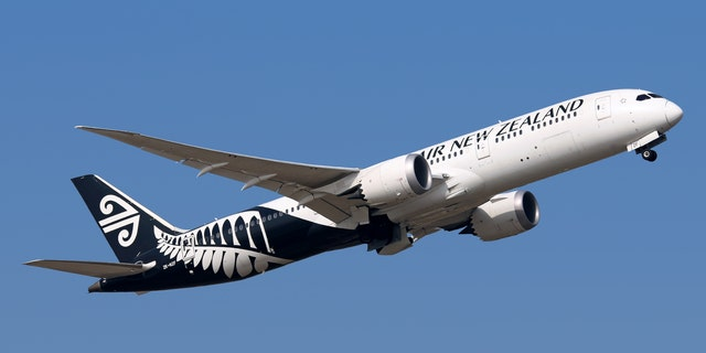 The plane was flying into Invercargill Airport from Christchurch on the country's southern tip.