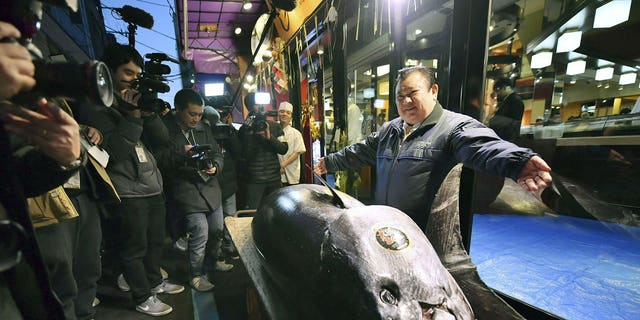 Kiyomura Corp. owner Kiyoshi Kimura, right, poses with the bluefin tuna he made a winning bid at the annual New Year auction, in front of his Sushi Zanmai restaurant in Tokyo Saturday, Jan. 5, 2019. The 612-pound (278-kilogram) bluefin tuna sold for a record 333.6 million yen ($3 million) in the first auction of 2019, after Tokyo's famed Tsukiji market was moved to a new site on the city's waterfront.